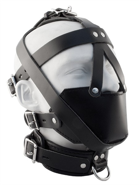 Mister B Premium Muzzle Head Harness