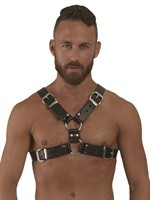 Mister B Leather Y-Front Harness