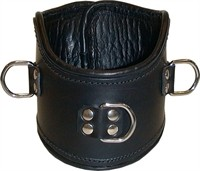 Mister B Leather Positioning Collar
