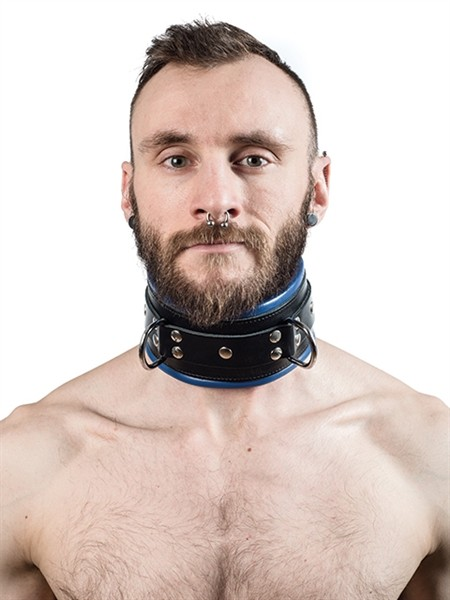 Mister B Leather Slave Collar Blue Padding